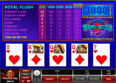 Video Poker vs Online Poker