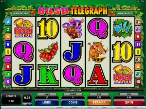 Which Slots have the Most Wild Symbols?