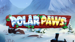 Get ready for the festive season with Quickspin's new Polar Paws game.