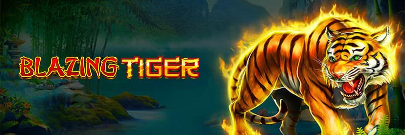 Blazing Tiger Asian slot