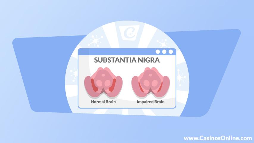 substantia nigra and pathological gambling